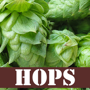 Home Brew Hops Ireland