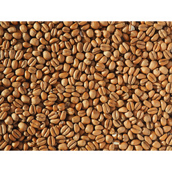 Crisp Toasted Wheat Malt (EBC 20 -30)
